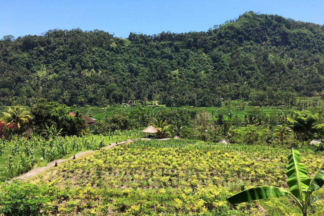 Bali-Reiseroute Sidemen