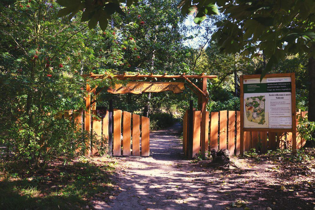 Wanderung Briesetal Waldschule