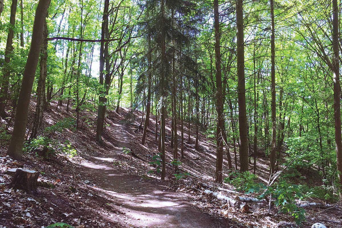 Havelhöhenweg Steilufer