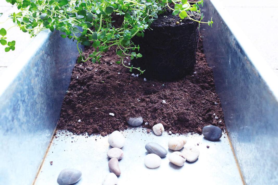 Boden der Pflanzwanne mit Erde bedecken