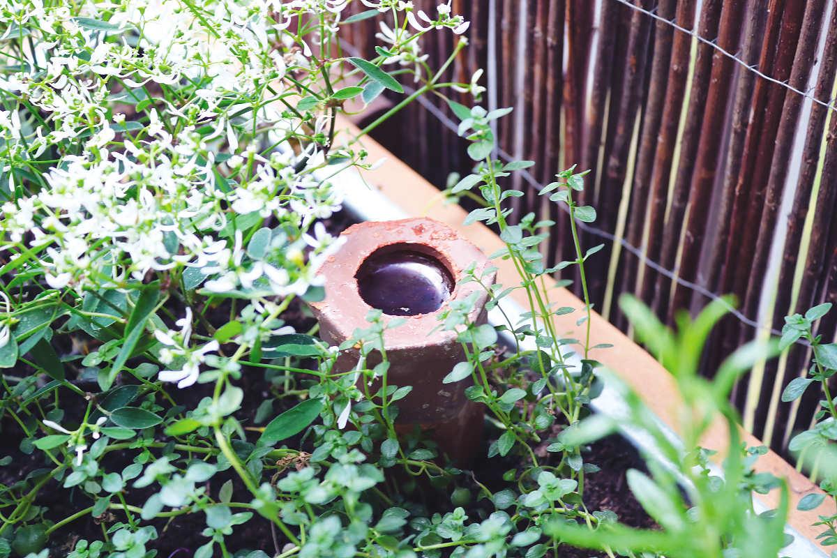 Hochbeet für Balkon bewässern